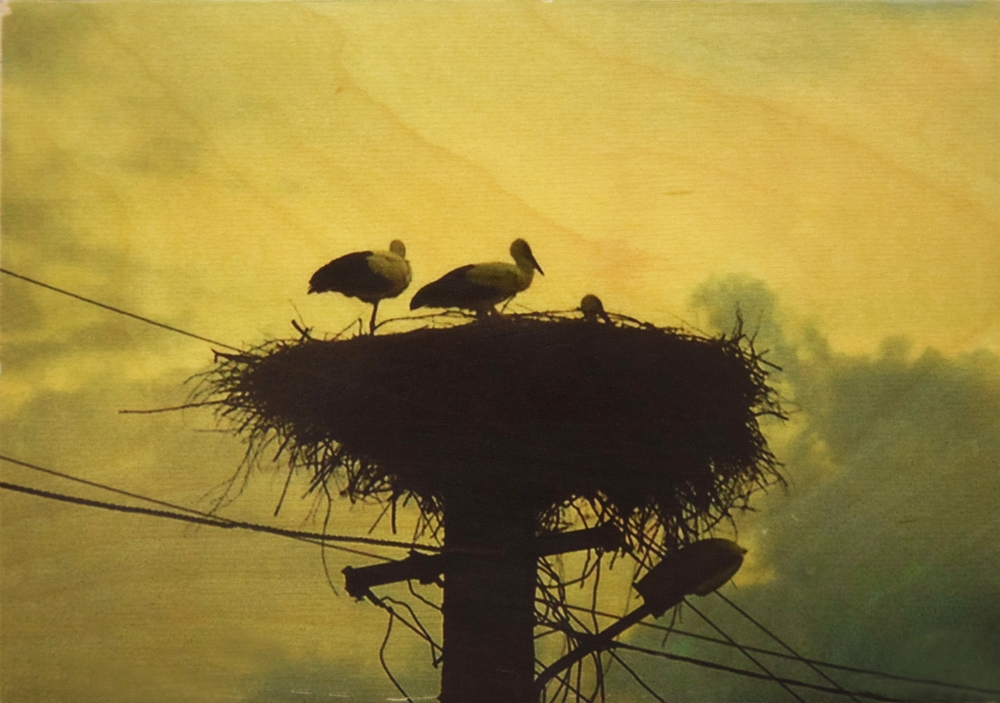 Seartworks-Selin-Le-Bagousse-Stork-Tales-11