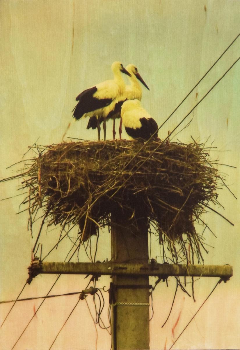 Seartworks-Selin-Le-Bagousse-Stork-Tales-3