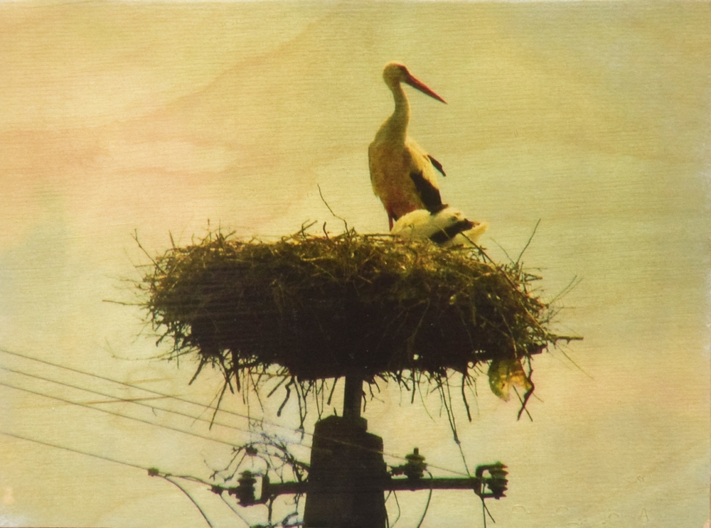 Seartworks-Selin-Le-Bagousse-Stork-Tales-5