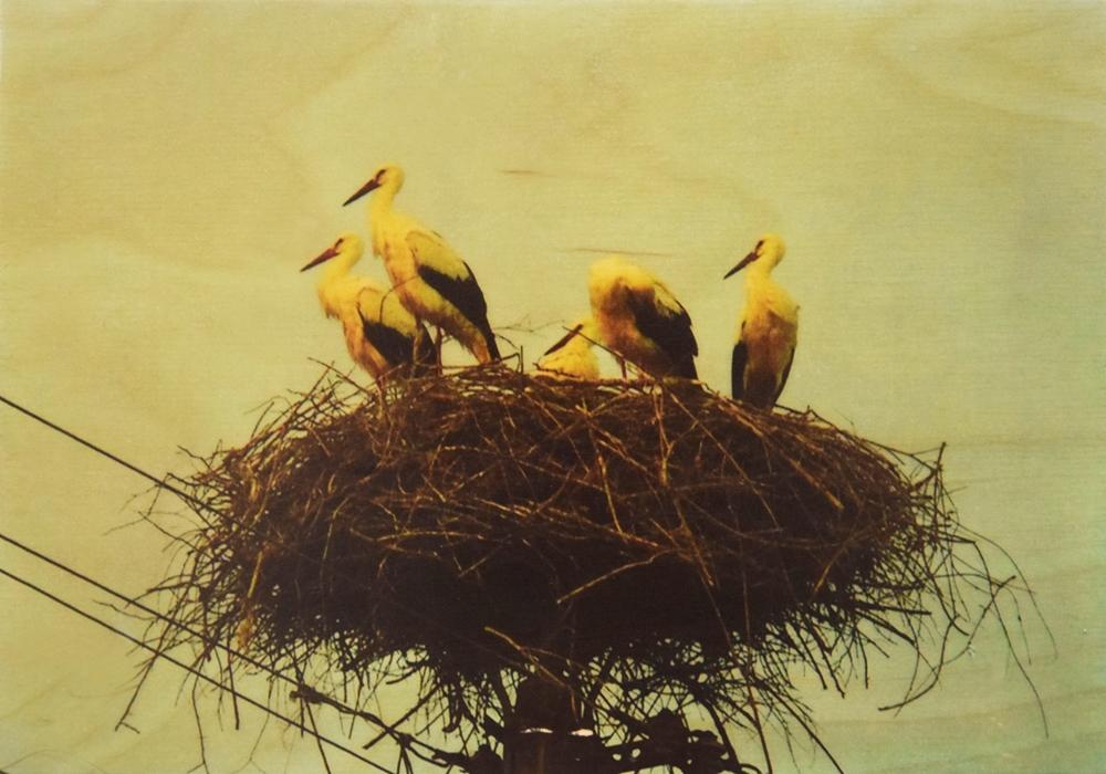 Seartworks-Selin-Le-Bagousse-Stork-Tales-6
