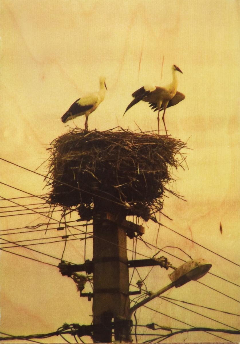 Seartworks-Selin-Le-Bagousse-Stork-Tales-8