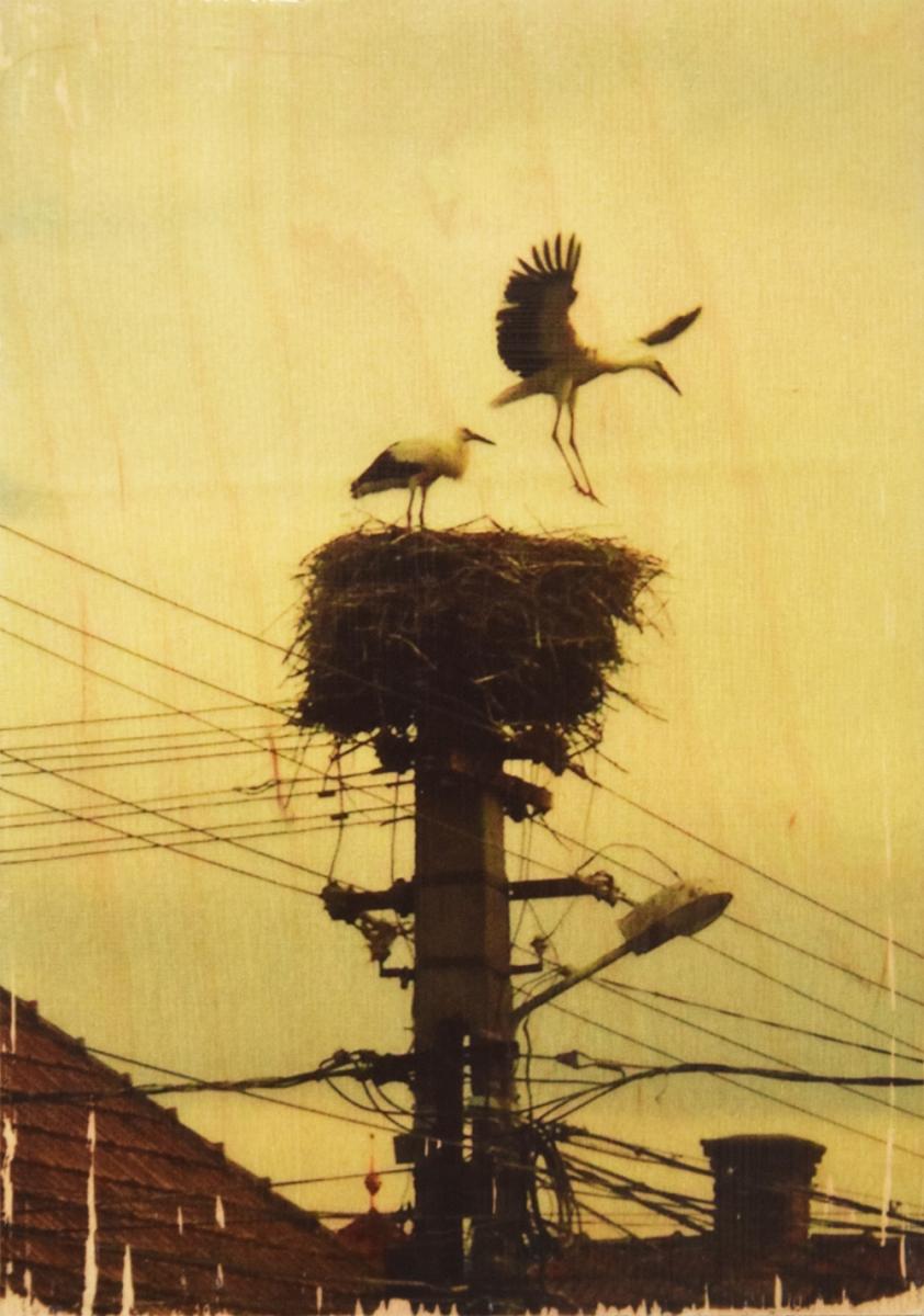 Seartworks-Selin-Le-Bagousse-Stork-Tales-9